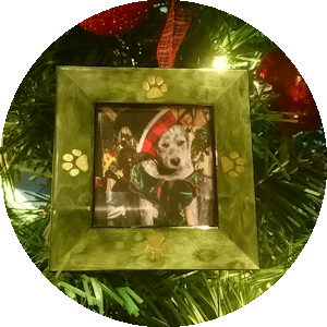 Christmas Ornament Frames for Your Favorite Pat